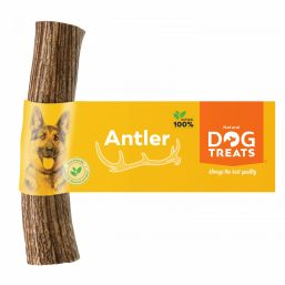 Dog antler