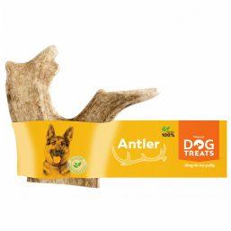 Dog Fallow Antler L size